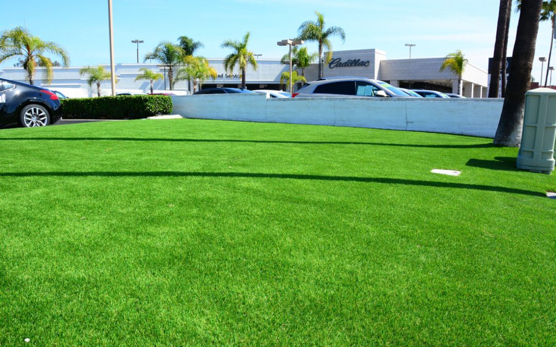 Facelift For Your Lawn
